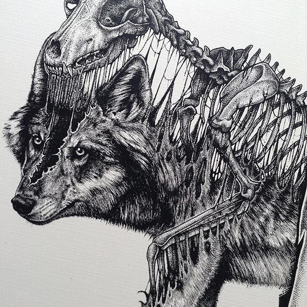 Los Animales Abandonan Sus Esqueletos En Los Asombrosos Y Oscuros Dibujos De Paul Jackson Esqueleto Dibujo Arte Del Craneo Dibujos De Animales