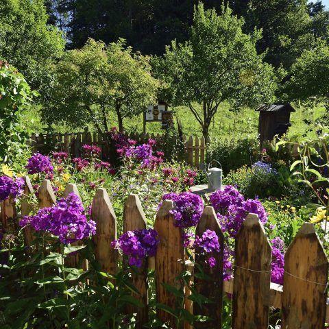 Immergrüne Sträucher – das sollten Sie vor dem Pflanzen wissen #immergrünesträucher Immergrüne Sträucher – das sollten Sie vor dem Pflanzen wissen - myHOMEBOOK #immergrünesträucher Immergrüne Sträucher – das sollten Sie vor dem Pflanzen wissen #immergrünesträucher Immergrüne Sträucher – das sollten Sie vor dem Pflanzen wissen - myHOMEBOOK #immergrünesträucher Immergrüne Sträucher – das sollten Sie vor dem Pflanzen wissen #immergrünesträucher Immergrüne Sträucher � #immergrünesträucher