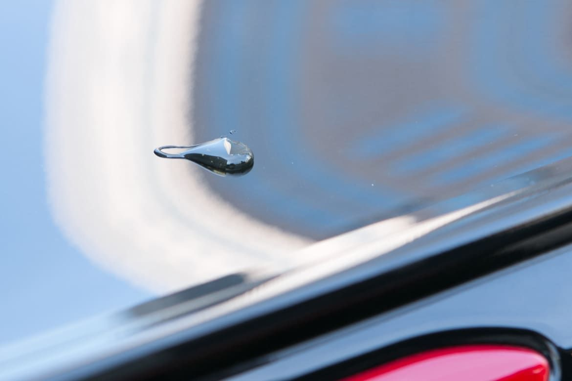 How To Get Rid Of Tree Sap On Your Car Sap Removal From Car