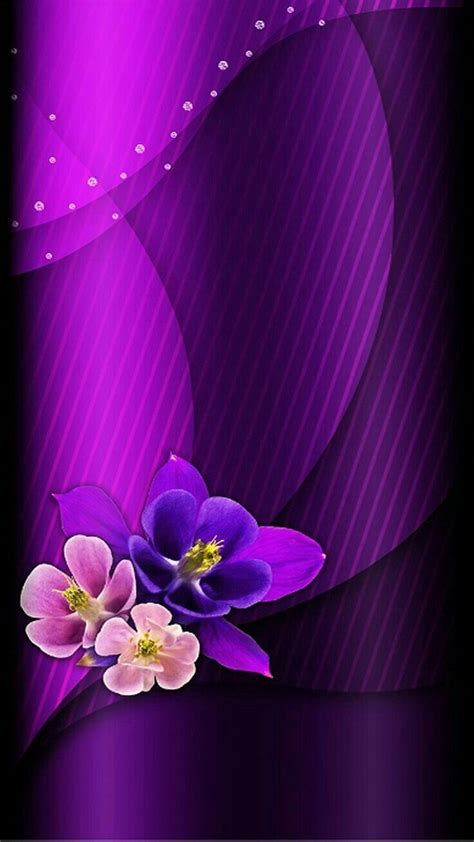 Images By Deborah Scotka On Back Grounds   Flower Background