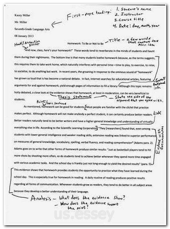 Essay Writing Program English Essay Pt Short Story Entries