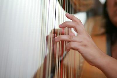 The modern concert harp includes 47 strings, seven pedals, a frame, a soundboard and a base.