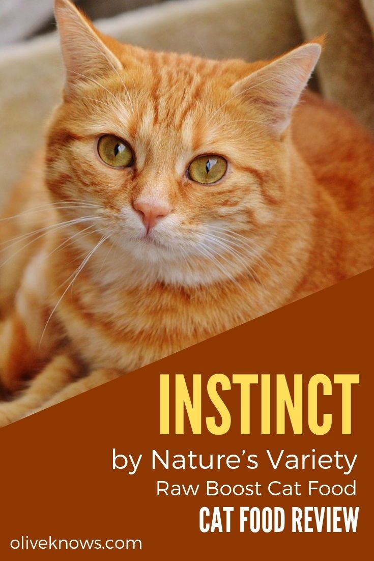 Instinct by Nature's Variety Raw Boost Cat Food Review