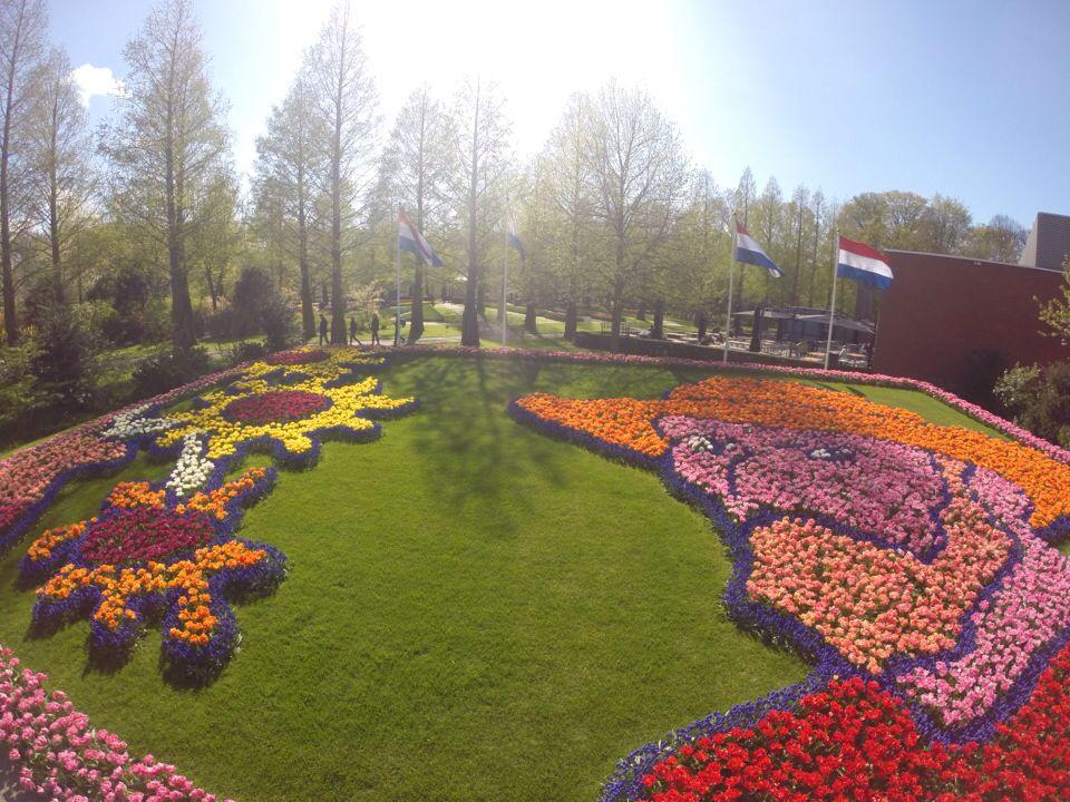 Marvelous Keukenhof Tulips Garden Amsterdam Holanda