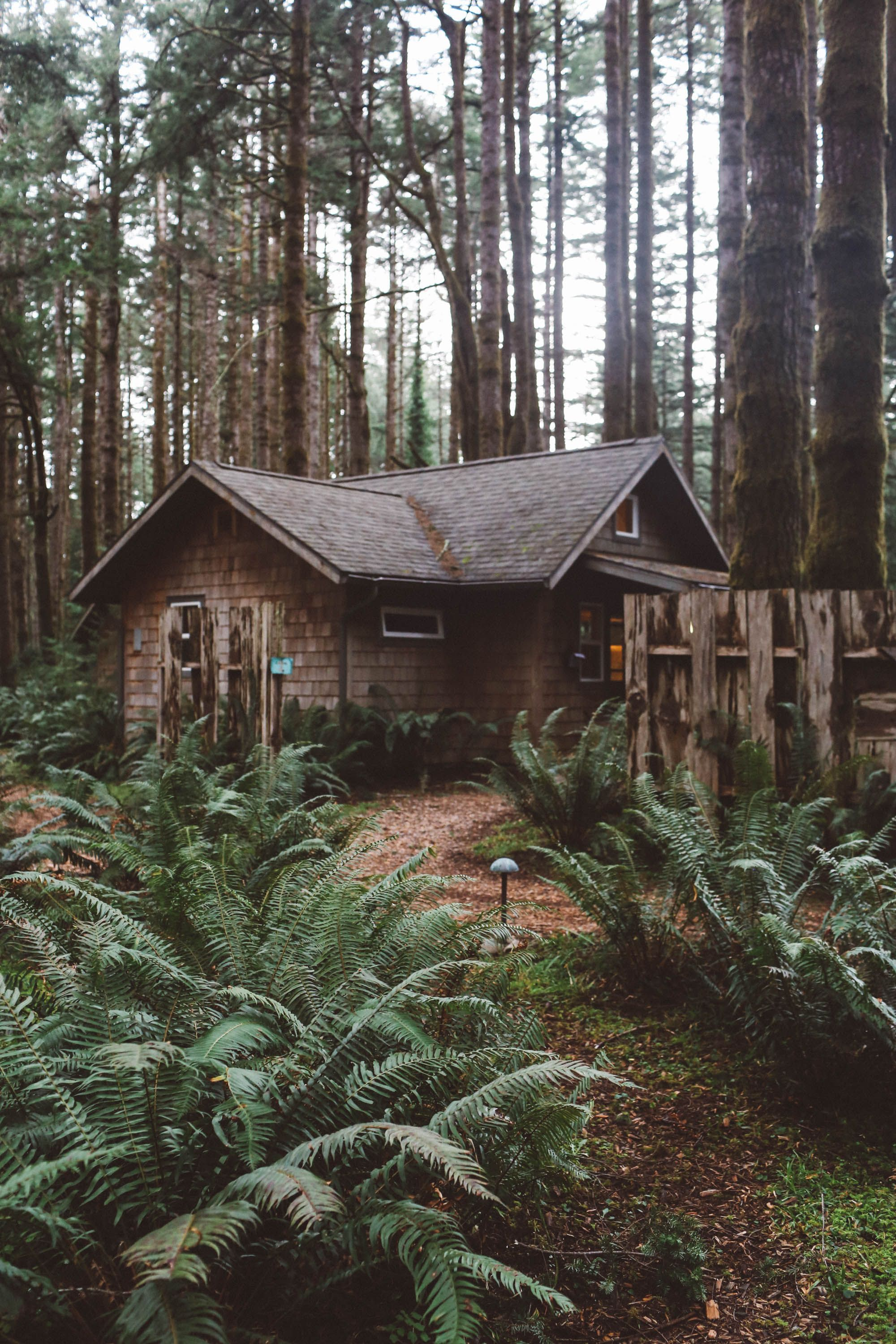 Best Places To Visit In Oregon Hotels Activities