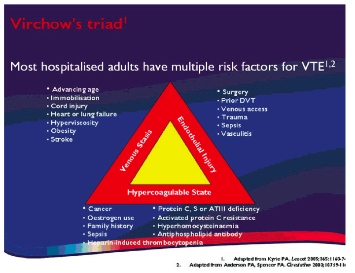 Virchow's Triad risk factors for Venous Thromboembolism