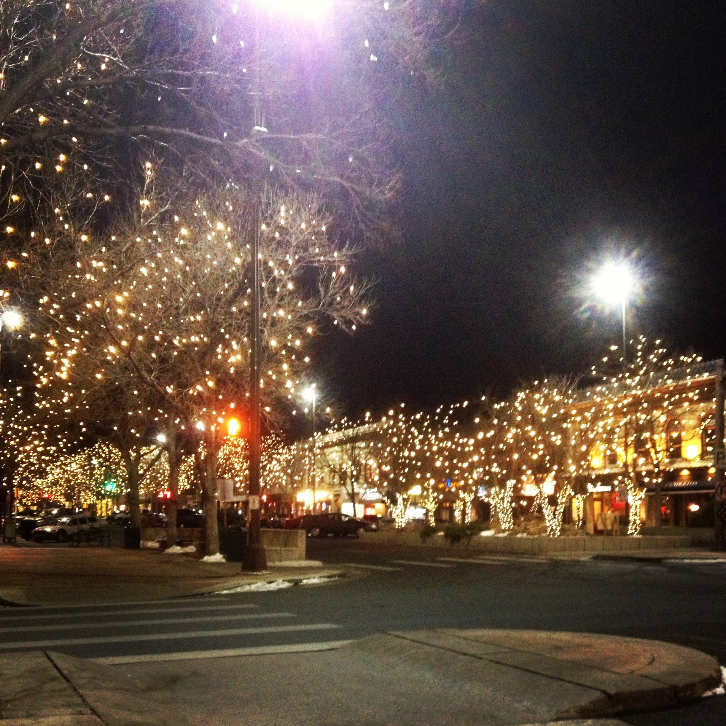 Old town fort collins christmas lights home fort - Village garden apartments fort collins ...