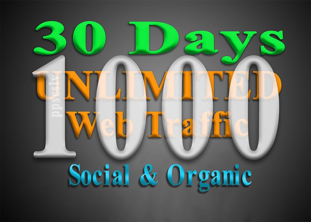 get 1000 daily visits for 1 month targeted WEB TRAFFIC