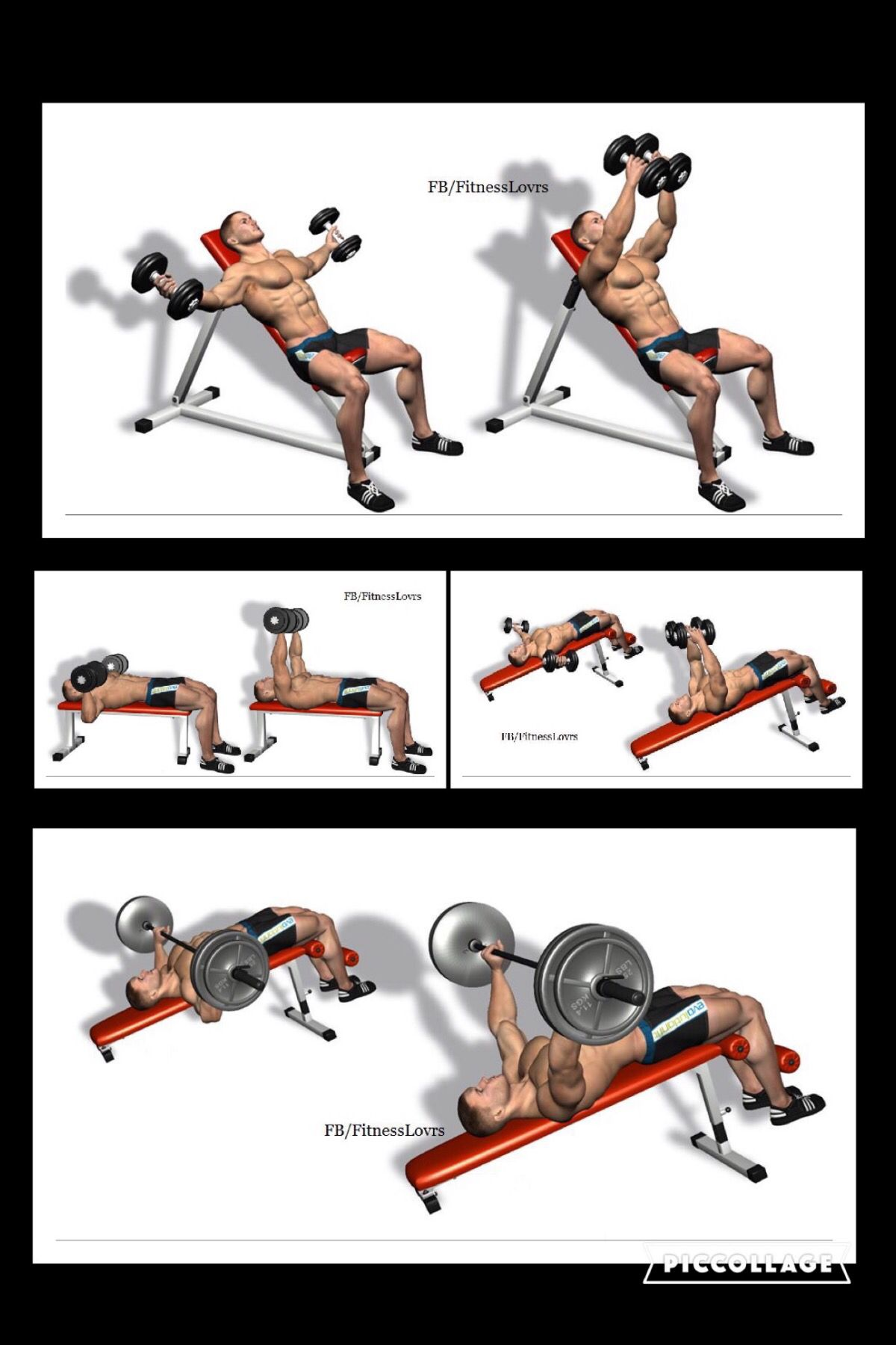 "Part 2 of 3. ""Best Chest Workout"" from Fitness Lovers on"