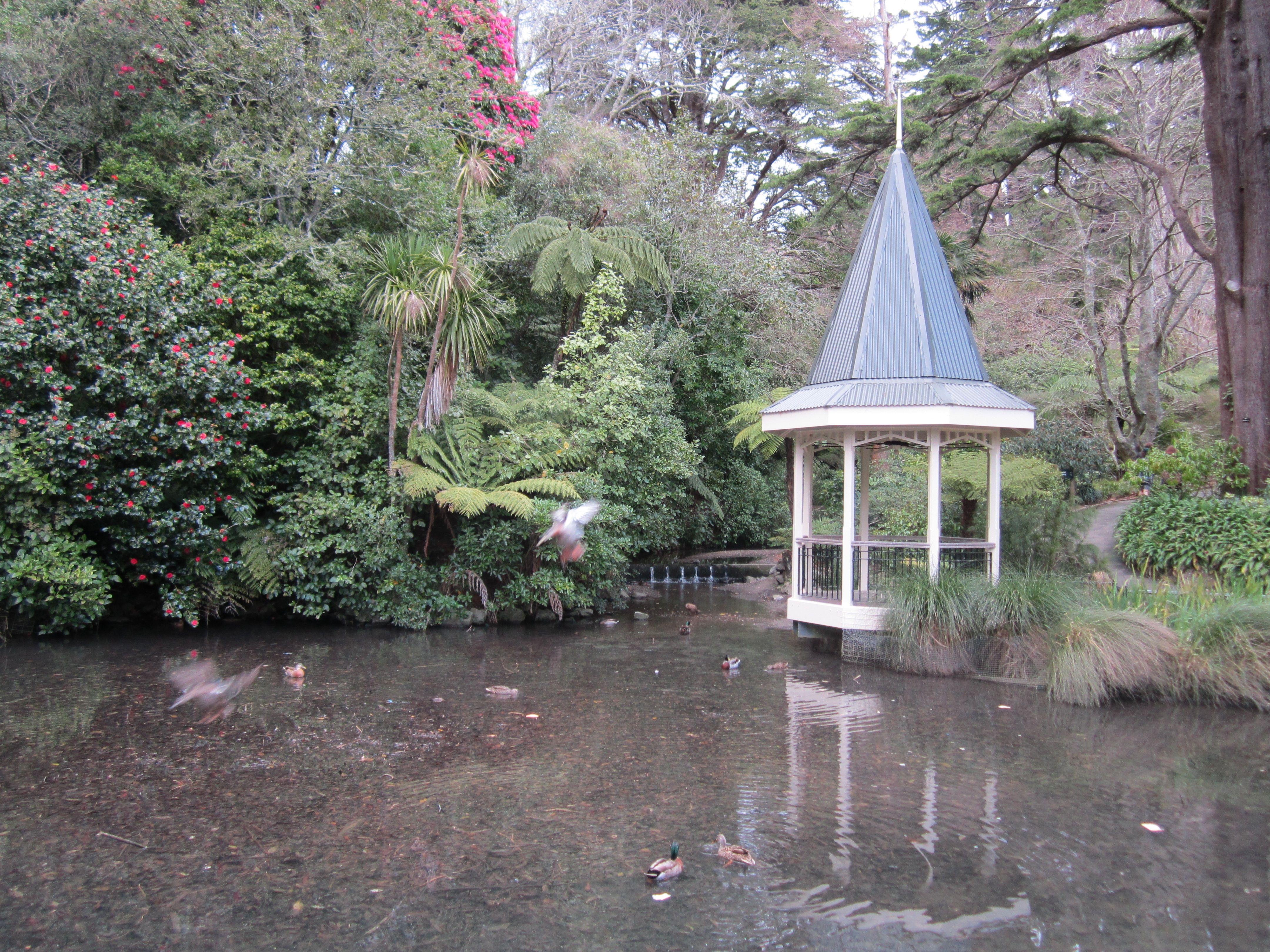 botanical gardens in winter wellington nz wellington new zealand