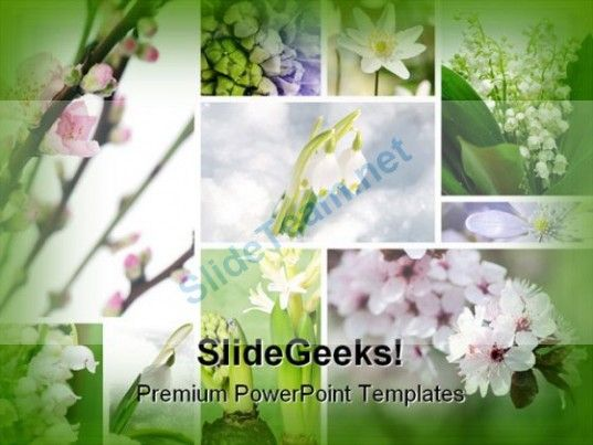 Spring Flowers Beauty PowerPoint Template 0810 #PowerPoint - spring powerpoint template