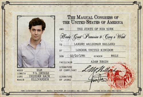 Wand Permit Download From Mediafire This Character Psd Is For Roleplays Set In The United States Where Wa Wands Harry Potter Magic Fantastic Beasts Movie
