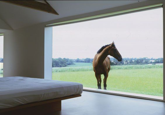 Barn Conversion Minimalist Architecture John Pawson House Residential Modern White Minimalism British Horse In Window Standing