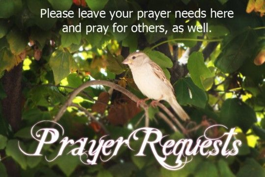 Pinned by Pat Blalock.......  Please pray for my family member and his family, KM he is a pastor and is fighting his 3rd battle with cancer. His family needs our prayers. Thanks to all.