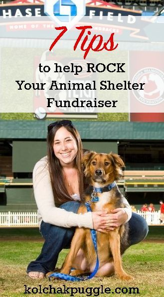7 Tips To Help Rock Your Animal Shelter Fundraiser Kol S Notes Animal Shelter Fundraiser Animal Shelter Animal Rescue Ideas