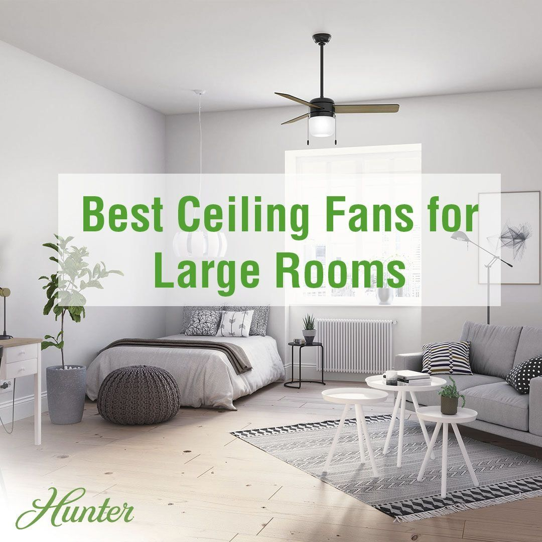 The Best Ceiling Fans For Large Rooms Hunter Fan Blog 1000 In 2020 Best Ceiling Fans Ceiling Fan Room Redesign