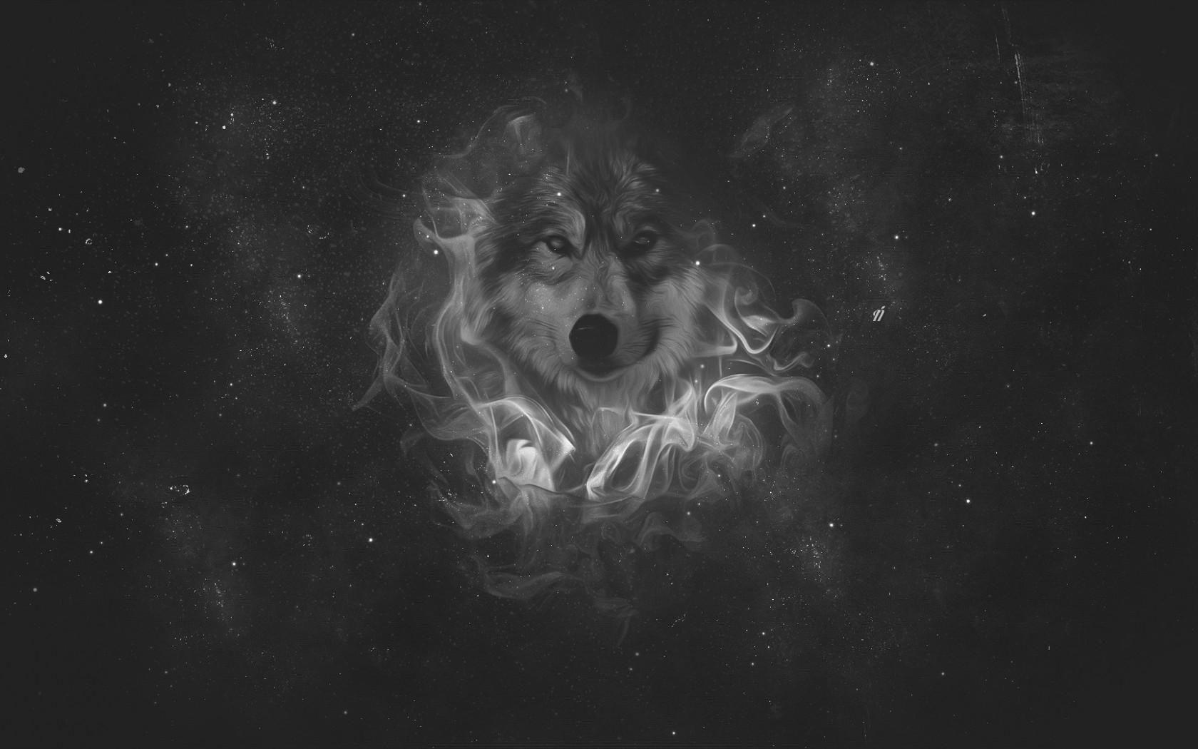 Full Hd P Wolf Wallpapers Hd Desktop Backgrounds X Wallpapers
