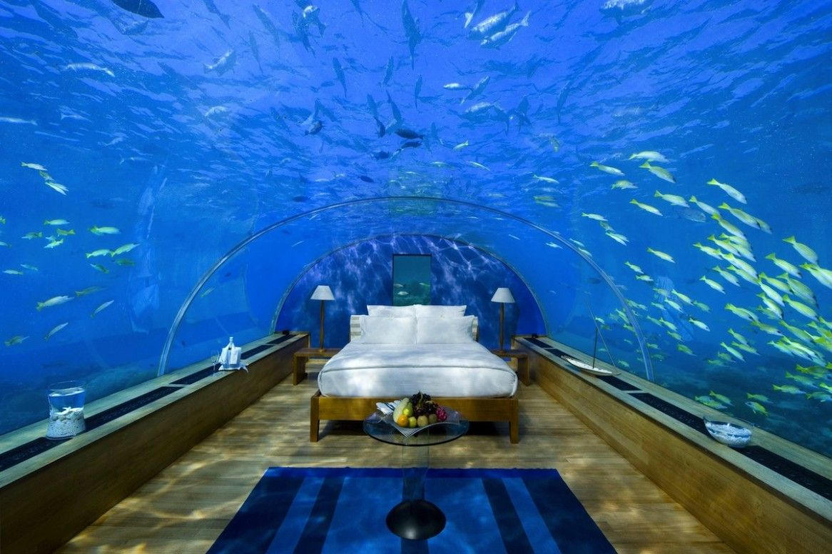 Hotels & Resorts: Breathtaking Underwater Hotel Room Design, Awesome Bedroom Design in Underwater Hotel Room with Sea Nature Scenery