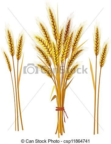small wheat sheaf vector - Google Search | Ink | Pinterest | Search