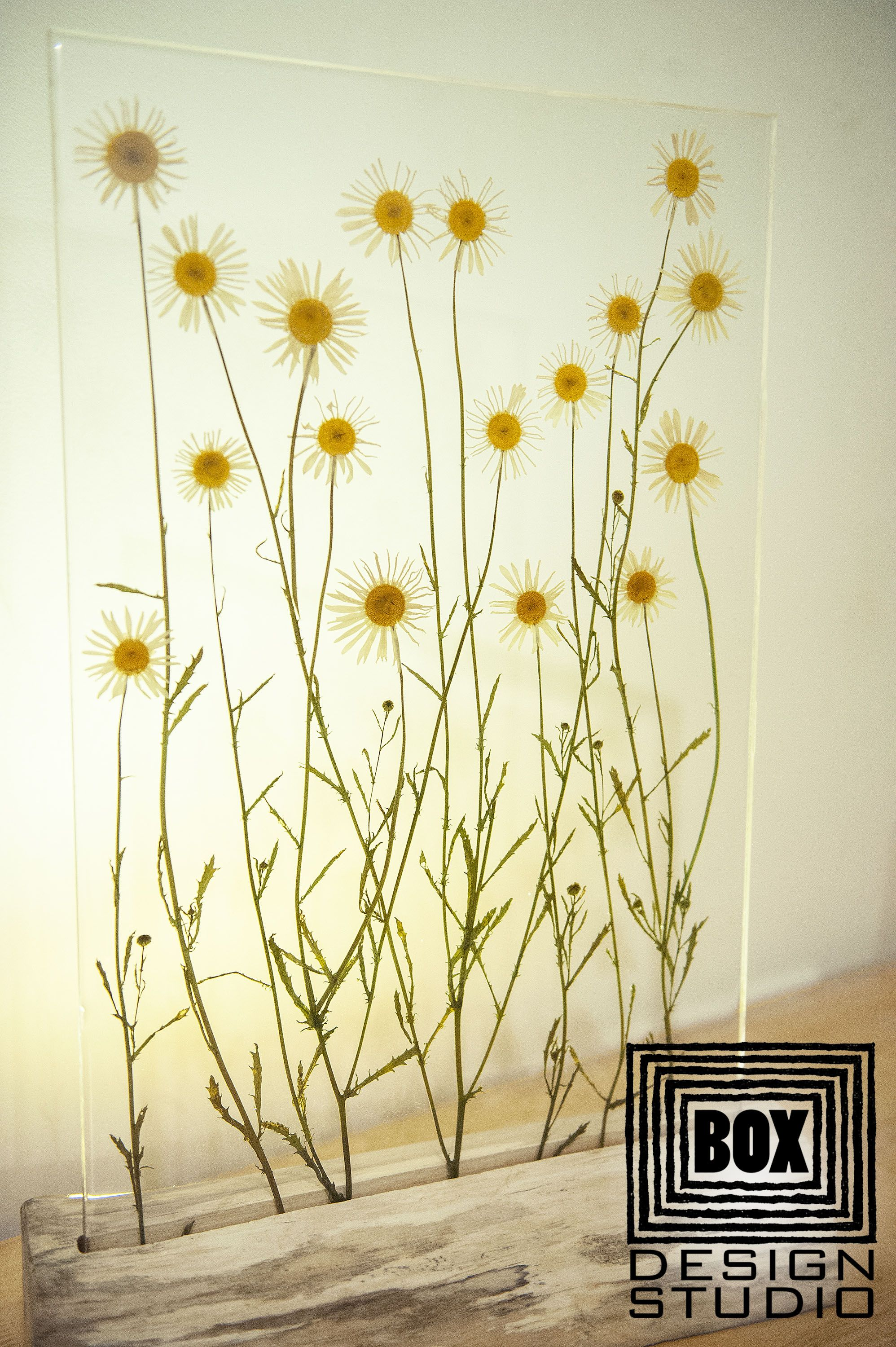 Wedding Gifts For Couple Lamp Modern Daisies Led Epoxy Resin Etsy In 2020 Pressed Flower Art Flower Art Rustic Design