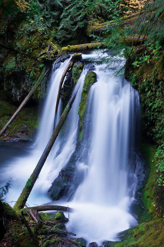 Snagtooth Falls, Skamania County, Washington - Northwest