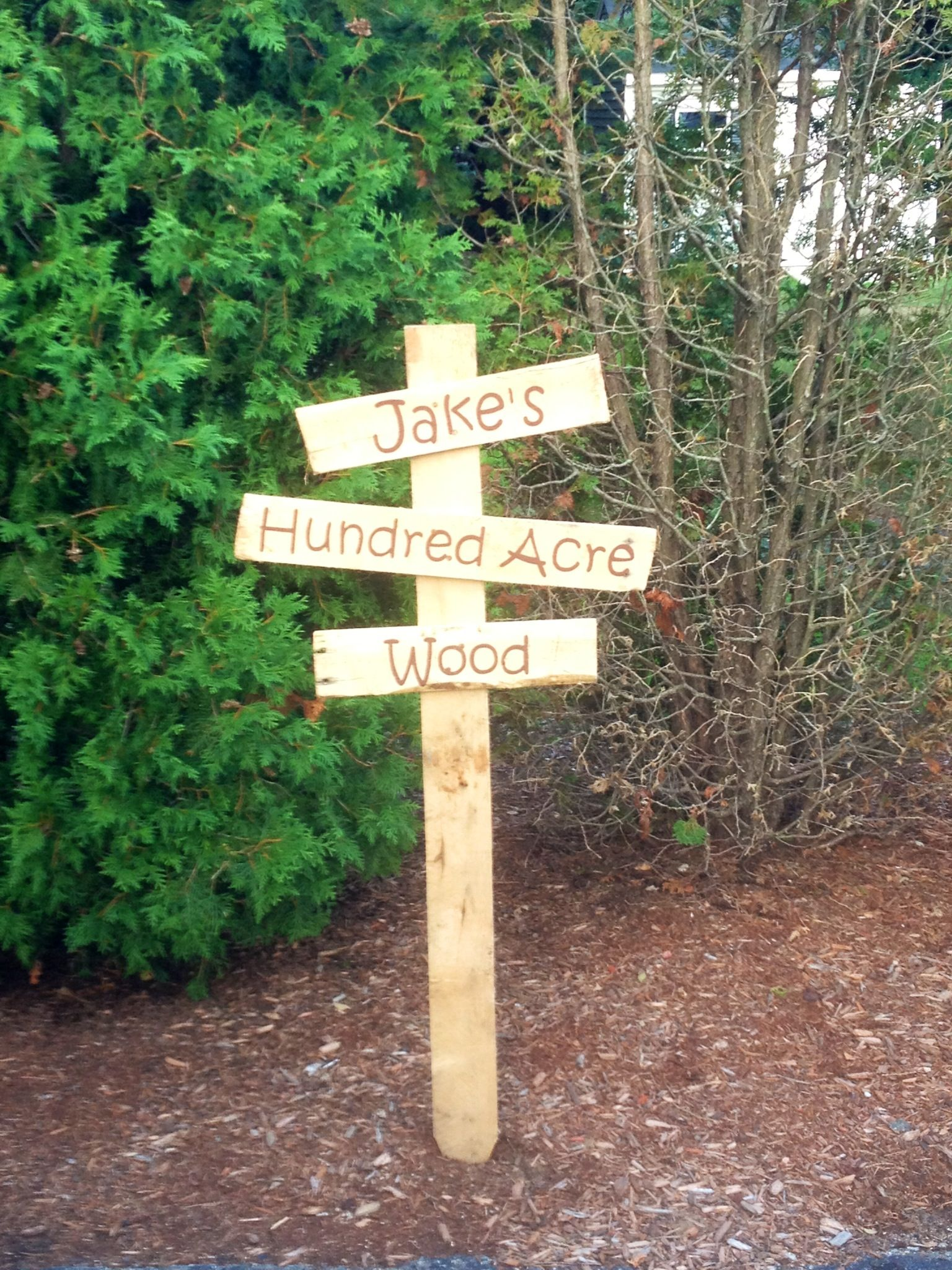 Winne The Pooh Hundred Acre Wood Sign Made With A Pallet