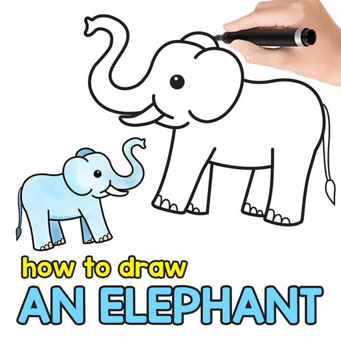 5 Exercises To Get Better At Drawing In 2020 Elephant Drawing