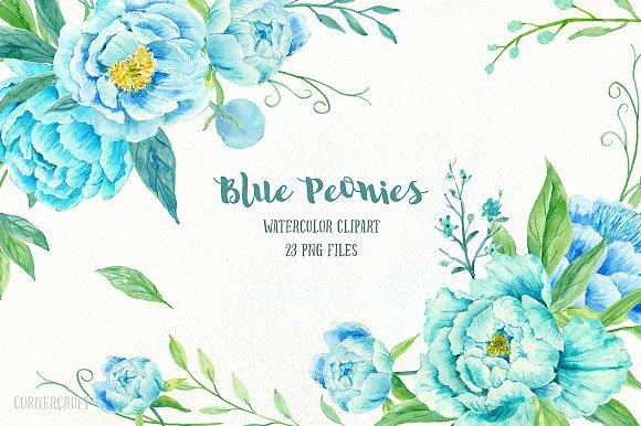 Hand Painted Watercolor Turquoise And Blue Peonies Decorative Elements Floral Arrangements