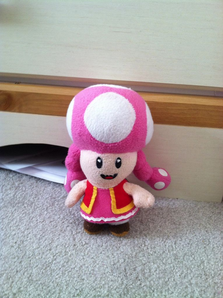 My Mommy Got Me This Cute Little Toadette Plush From Benyton Gifts