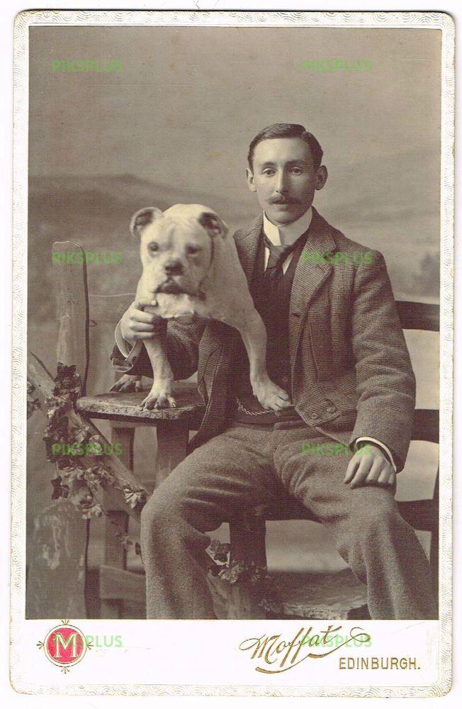 Old Cabinet Photo Gent With Pet Bulldog Moffat Studio Edinburgh