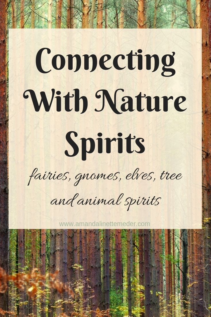 Why not? You may as well make life magical! There is only so much of it. Fairies, gnomes and elves have been talked about in fairy tales but those stories come from somewhere. What's the best group for you to start connecting with now? Read on to find out more in Connecting with Nature Spirits Tips!