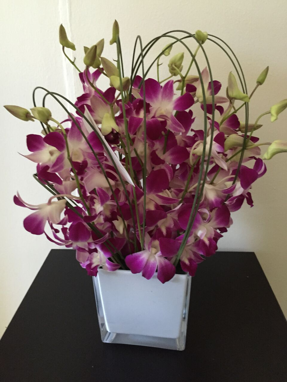 Our Range Of Orchids Come In A Variety Of Colours To Put A Smile On The Face Of Your Special Orchids Are Beautiful And Flower Delivery Orchid Flower Orchids