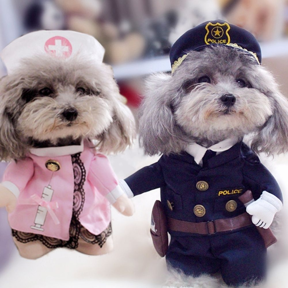 Amusing Various Themed Halloween Costumes For Dogs Dog Costumes