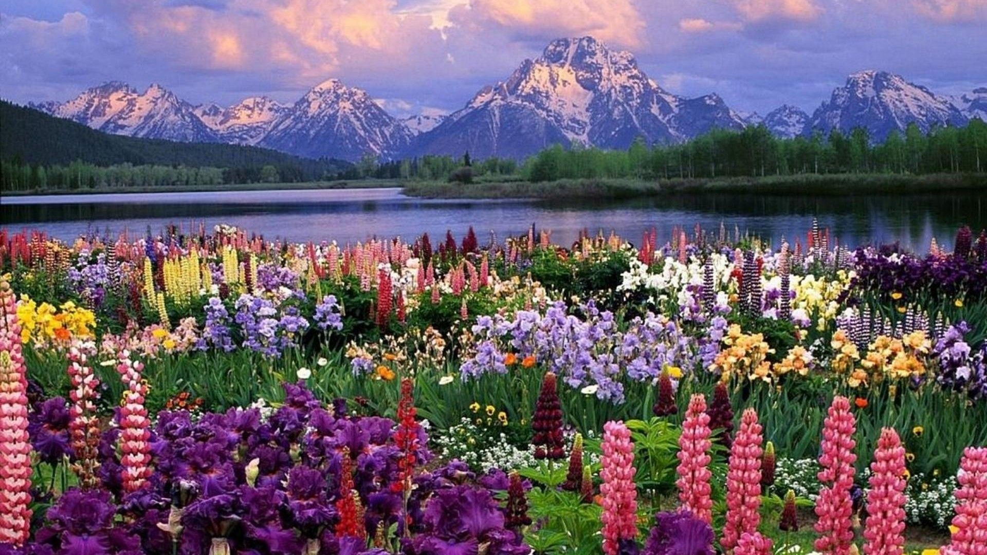 10 Best Spring Pictures For Desktop Full Hd 1920 1080 For Pc Desktop Landscape Wallpaper Spring Desktop Wallpaper Spring Wallpaper