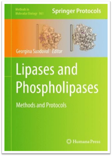 Methods in Molecular Biology Vol.861 - Lipases and Phospholipases Methods and Protocols | Sách Việt Nam