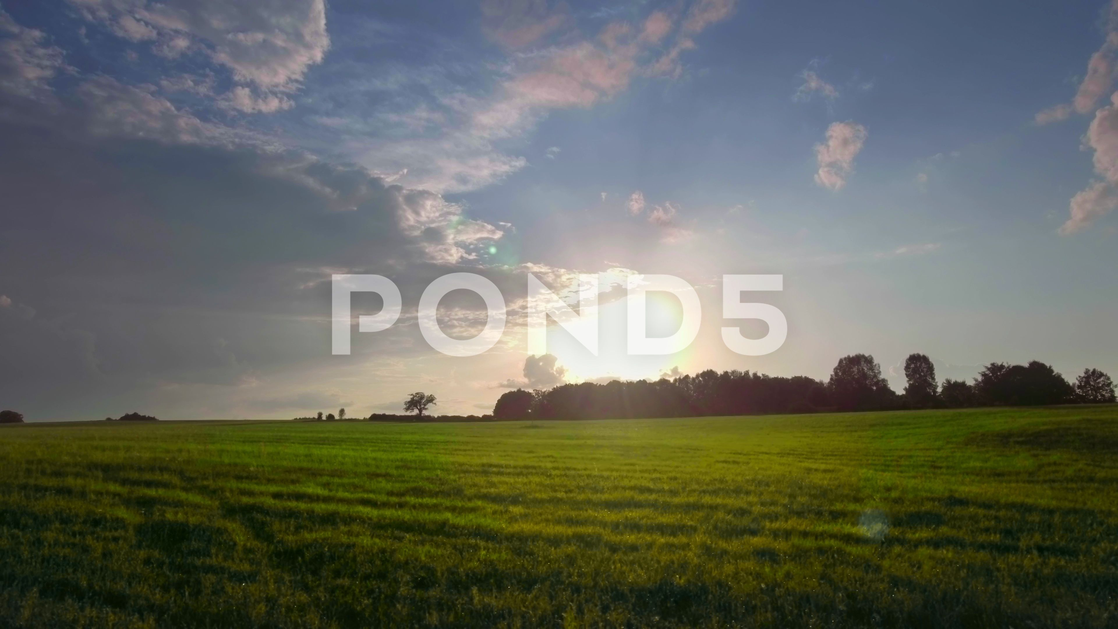 Aerial agriculture nature field green grass meadow cloudy