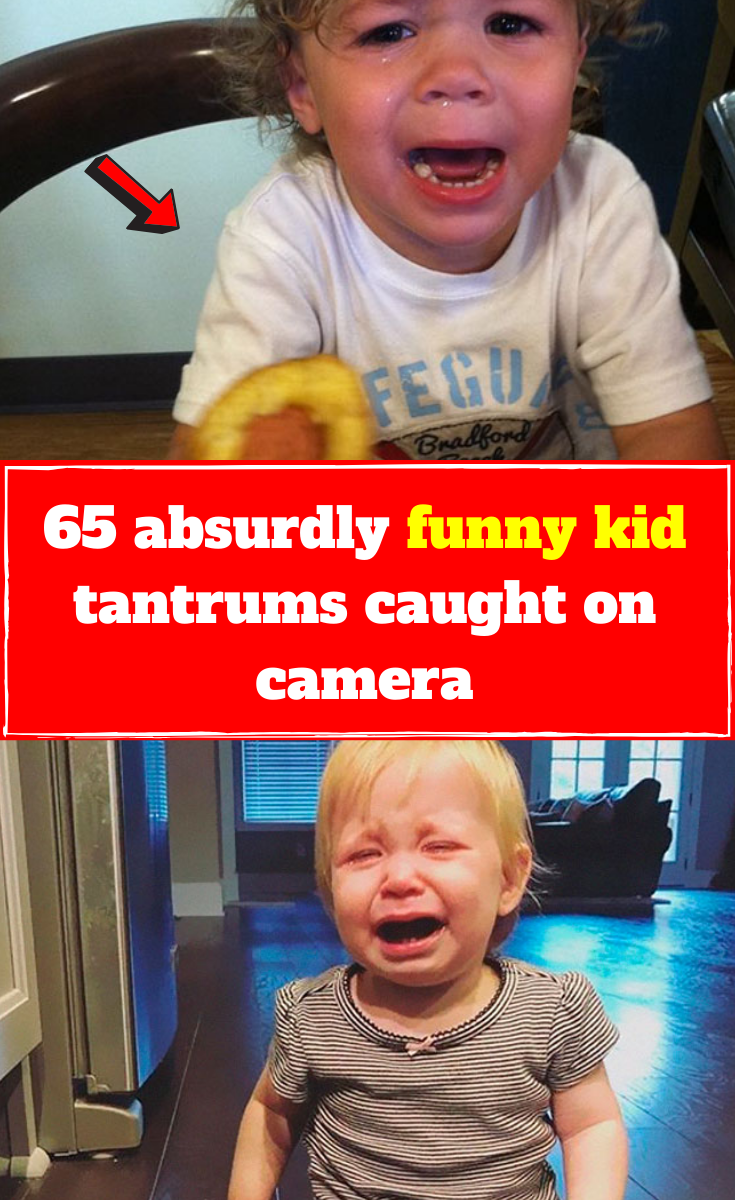 Latest Funny Kids 65 absurdly funny kid tantrums caught on camera One of the most challenging parts of parenting is navigating through the complicated workings of a child's mind. It's so difficult to know what goes on inside a kid's head! Yes, they can be really cute, adorable and hilarious at times, but there are also moments where they can be quite ridiculous! 65#absurdly#funny#kid#tantrums#caught#on#camera 10