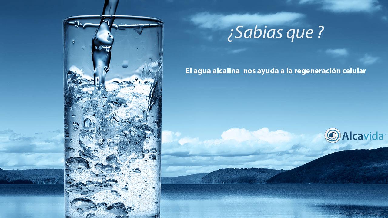 hidratante a nivel celular con agua alcalina