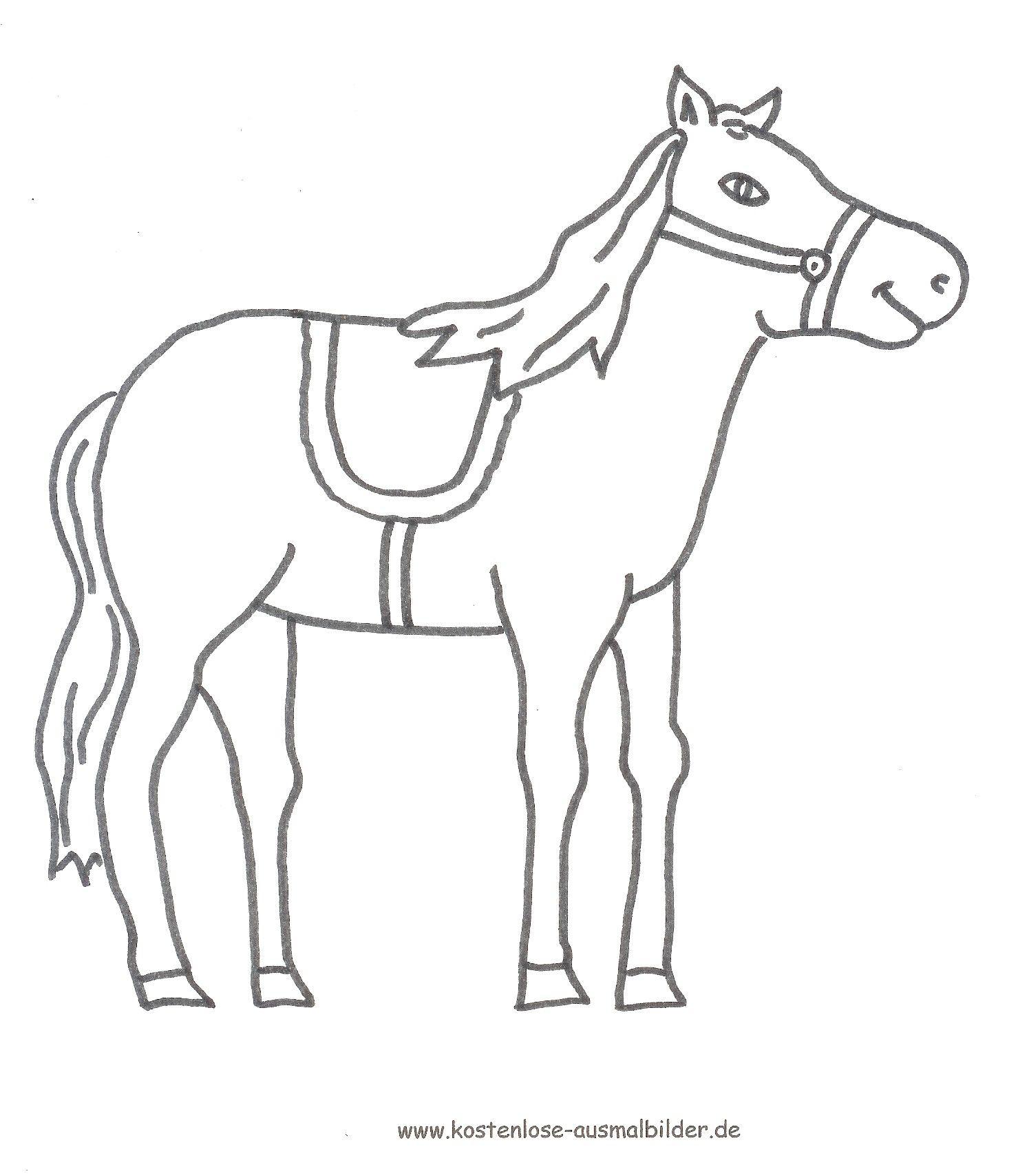 Ausmalbilder Pferde Kostenlos  Ausmalbilder pferde, Ausmalbilder