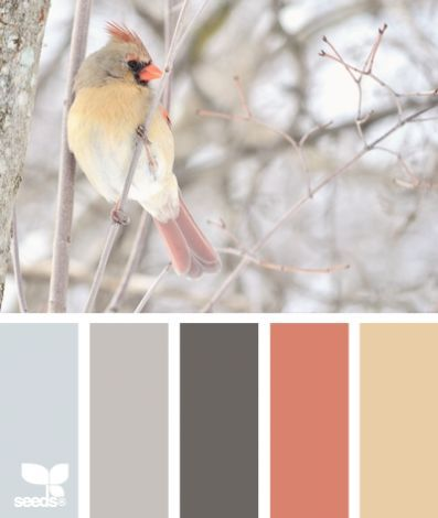 """11 beautiful paint palettes inspired by winter. even though it says """"winter"""", i could see the wall colors the first 2, with decor accents with the other 3?"""