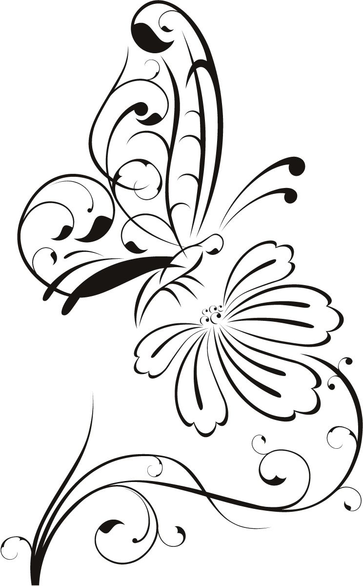 Butterfly on flower outline floral wall decal wall stickers butterfly on flower outline floral wall decal wall stickers transfers amipublicfo Choice Image