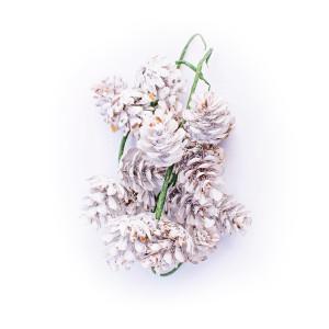 Mini Szyszki Dekoracyjne Biale 6 Szt Floral Rings Floral Flowers