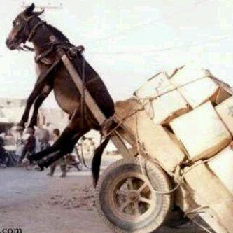 Mucha carga