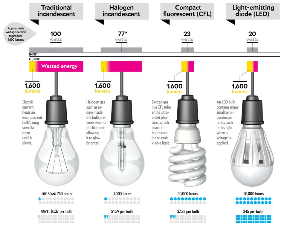 Philips Led Light Bulb That Lasts 20 Years To Go On Sale Sunday Energy Efficient Light Bulbs Led Light Bulb Bulb