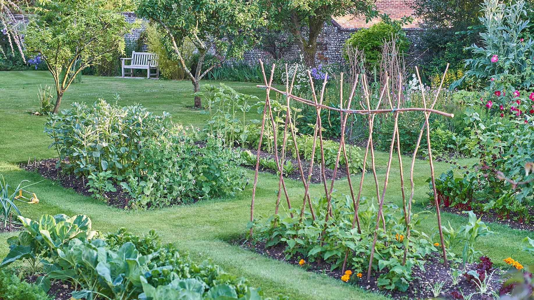 4 Home Vegetable Garden Ideas Types On A Budget Backyard