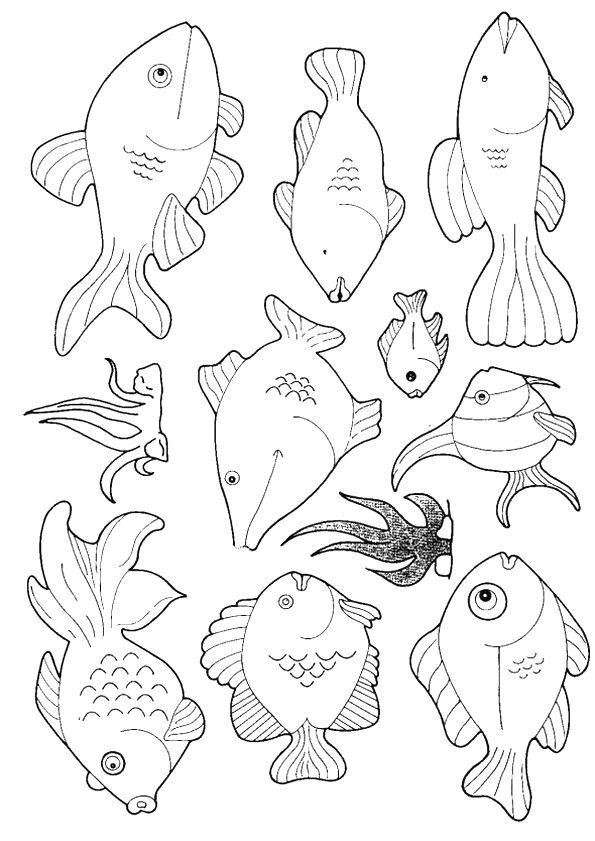 vis kleurplaat peuter vissen kleurplaat 53 leukste
