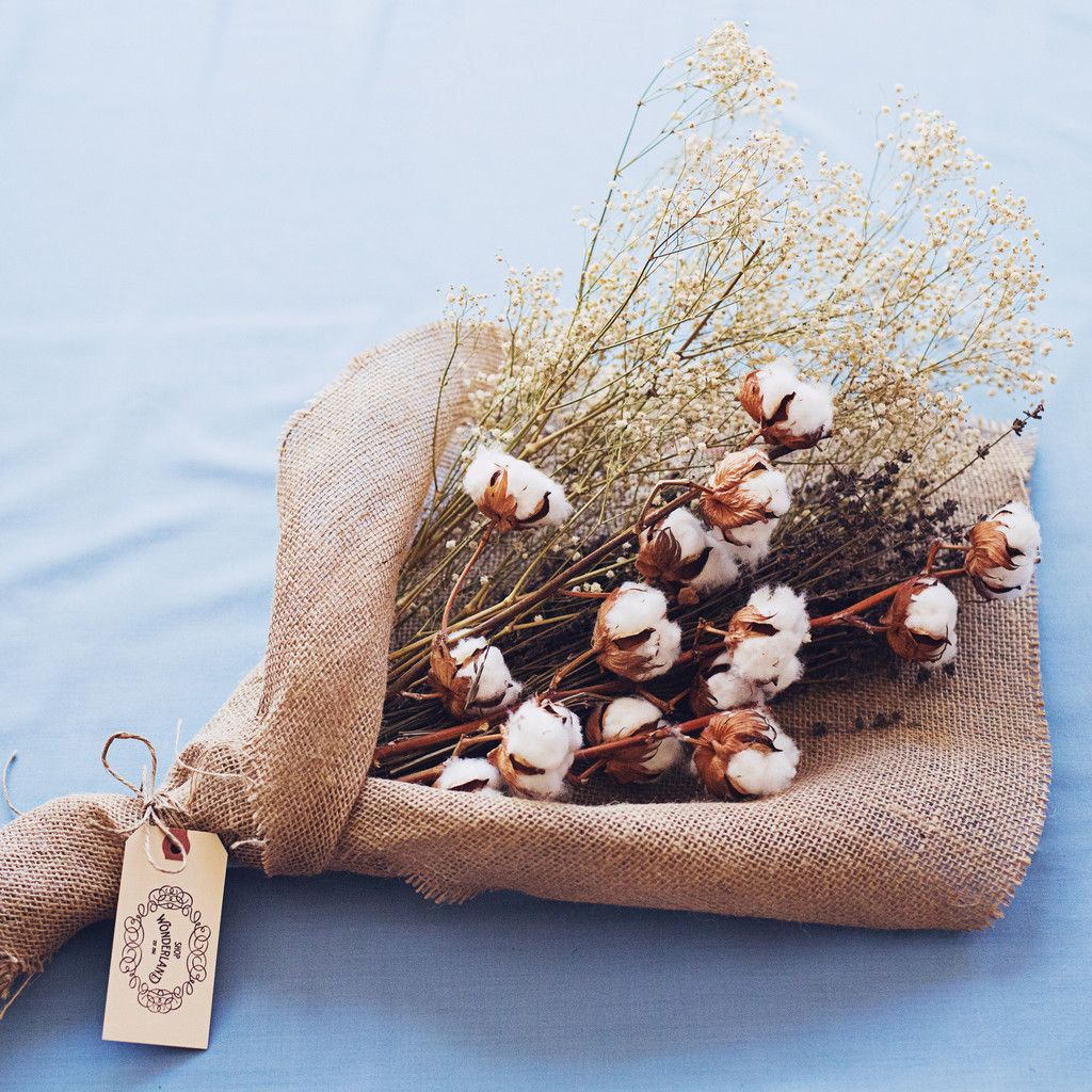 Bouquet / Dried Florals- cotton stalks, baby\'s breath and lavender ...