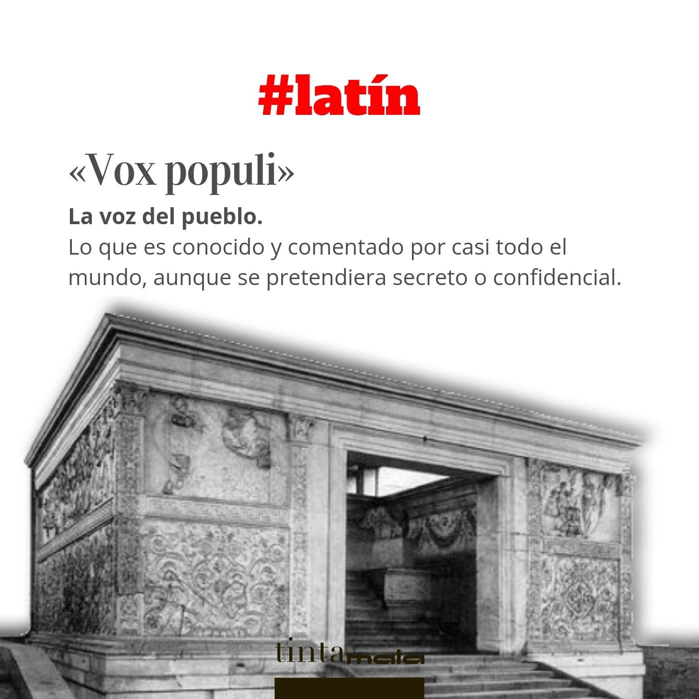 Pin De Fox En Frases En 2020 Con Imagenes Citas En Latin Palabras De Vocabulario Frases Latin Traducidas