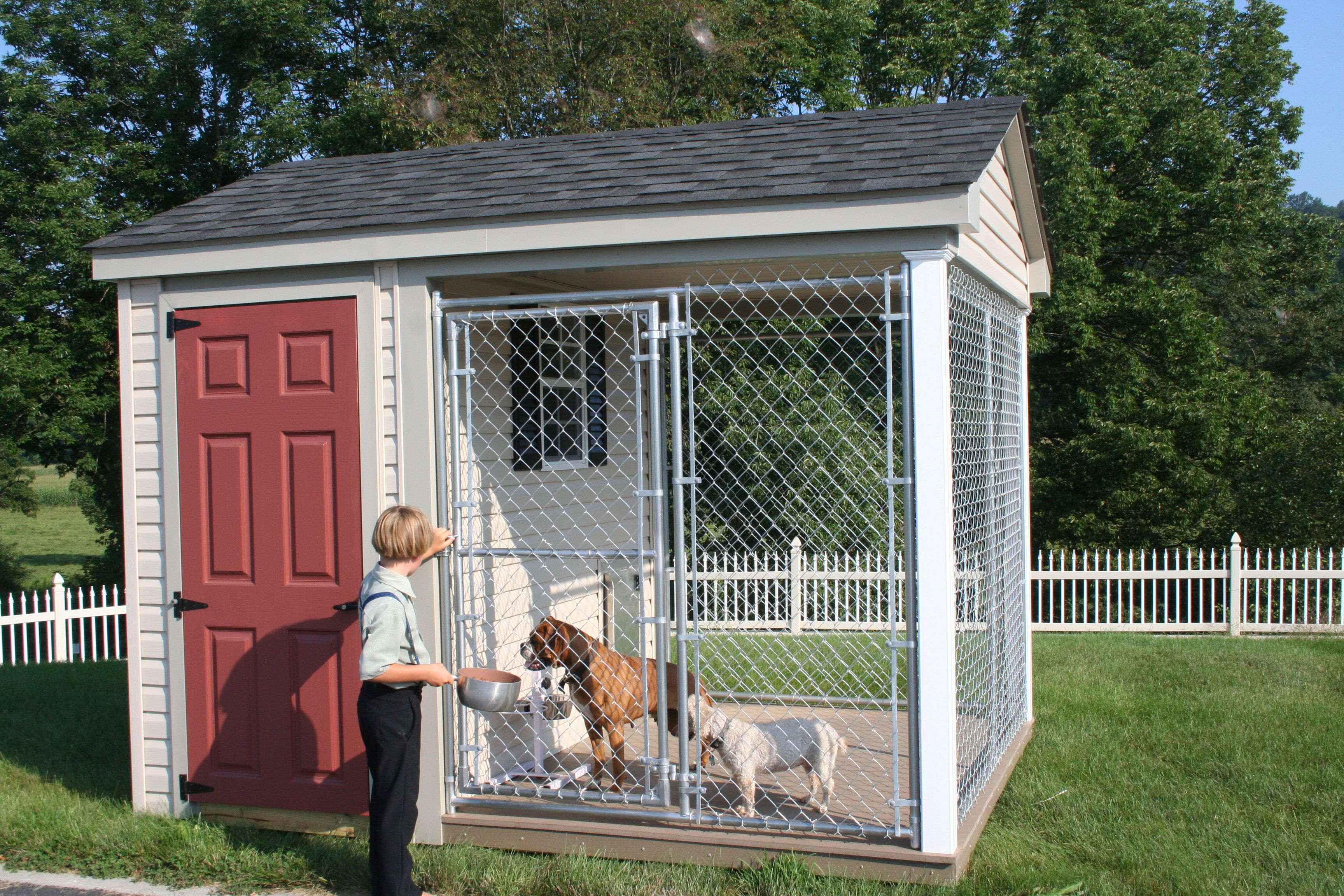 Check Out These Dogs Enjoying Their New Home Dog Kennel Outdoor Dog Dog Houses