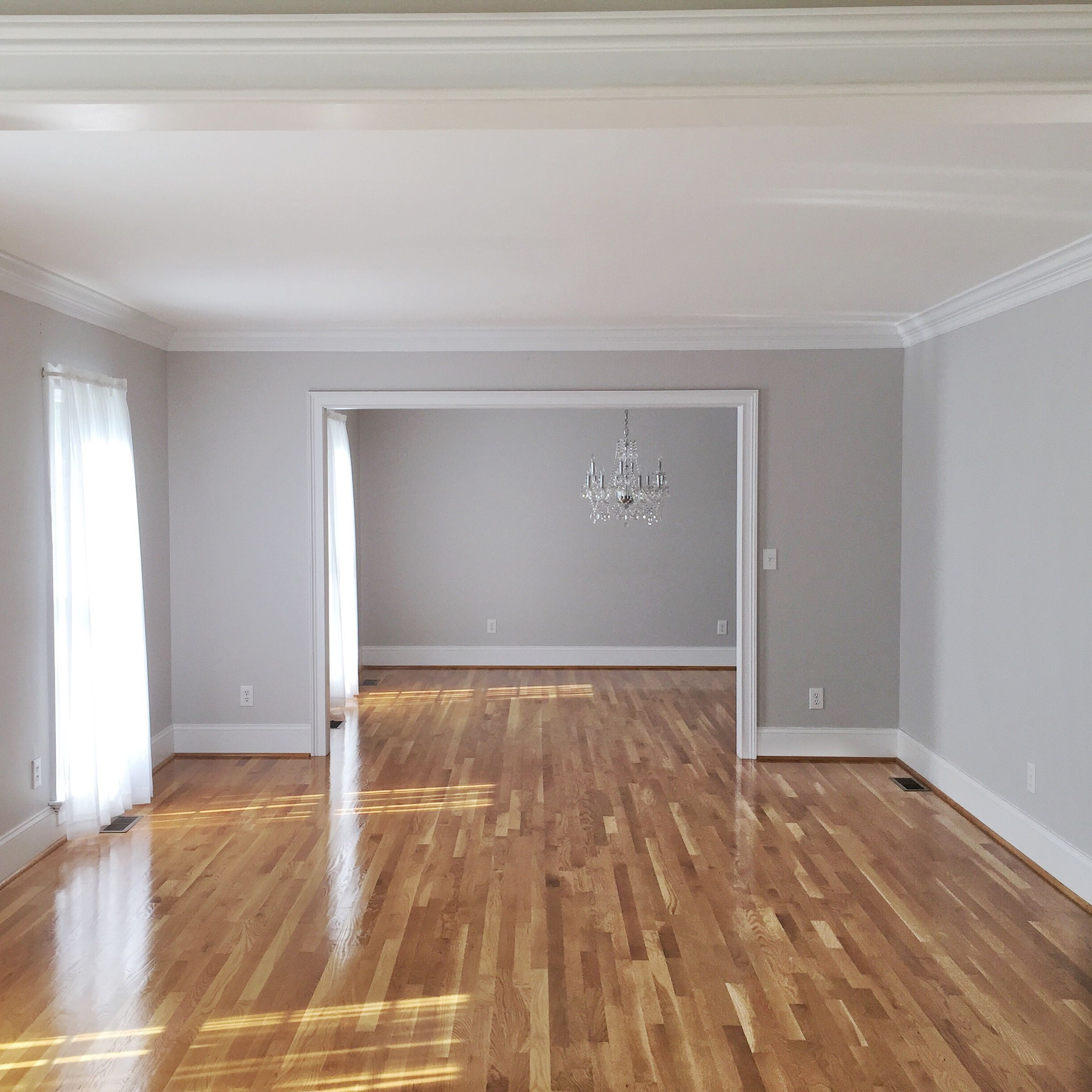 Light Grey Wall bethany mitchell homes // hardwood floors, natural light, grey